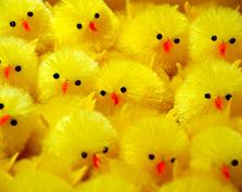 Najradośniejszych Świąt Wielkanocnych!